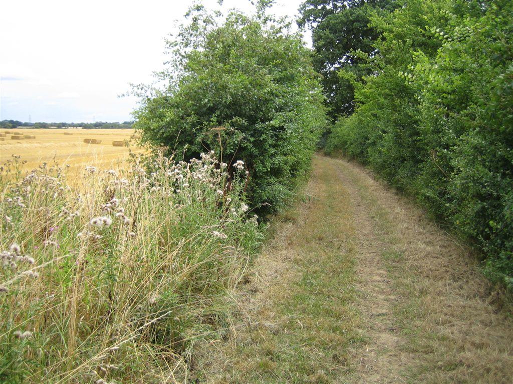 Hundred Lanes Suffolk